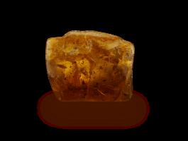 amber50756